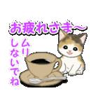 毎日優しいもこもこ猫ちゃんズ(個別スタンプ:7)