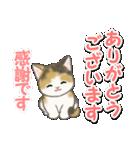 毎日優しいもこもこ猫ちゃんズ(個別スタンプ:15)