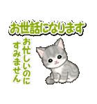 毎日優しいもこもこ猫ちゃんズ(個別スタンプ:22)