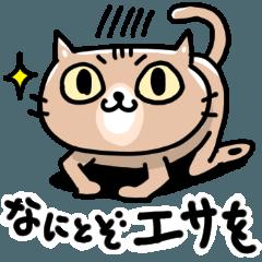 [LINEスタンプ] キジトラ猫のチョコ