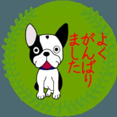[LINEスタンプ] ★フレンチブルドッグ★