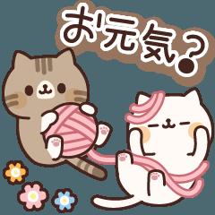 [LINEスタンプ] ネコがいっぱいスタンプ