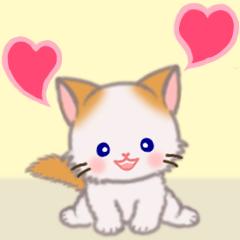 [LINEスタンプ] ハート伝える もふもふしっぽの子猫ちゃん