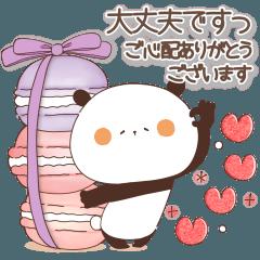 [LINEスタンプ] 敬語の長文♡敬語で親切なまんまるパンダ10