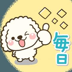 [LINEスタンプ] ✨大人の日常✨【毎日♪便利】白ver