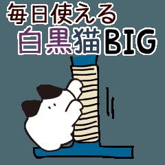 [LINEスタンプ] Big 毎日使える 小さい白黒猫