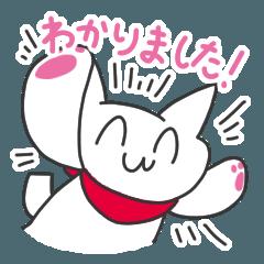 [LINEスタンプ] わかったりわからなかったりを即答するネコの画像(メイン)