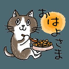 [LINEスタンプ] かめおかあきこの米沢弁を話す猫たち