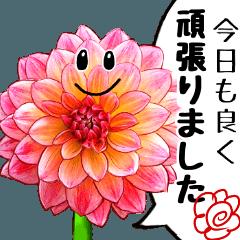 [LINEスタンプ] 可愛い過ぎない大人シンプルなお花4 労い
