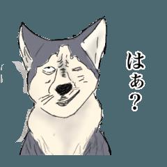 [LINEスタンプ] ワンダフルな犬たち