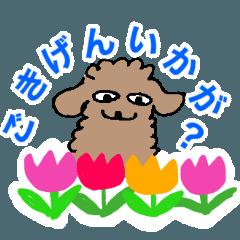 [LINEスタンプ] 春につかえるプードルスタンプ ちゃ系