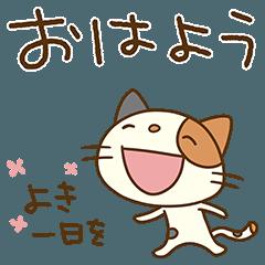[LINEスタンプ] 気持ち伝える☆猫のミーニャ
