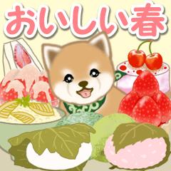 [LINEスタンプ] よちよち豆柴 おいしい春