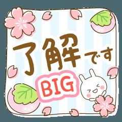 [LINEスタンプ] BIG★優しいうさぴのナチュラルスタンプ
