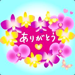 [LINEスタンプ] 動く♪ランランお花を贈ろう 2
