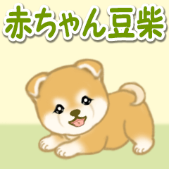 [LINEスタンプ] 赤ちゃん豆柴 毎日使うスタンプ