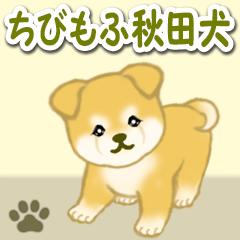 [LINEスタンプ] ちびもふ秋田犬 毎日使うスタンプ