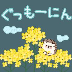 [LINEスタンプ] 動く!ハリネズミのハリー2[春]