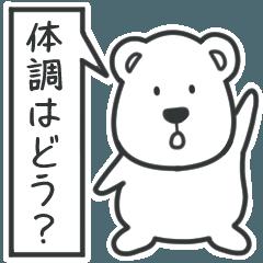 [LINEスタンプ] 白いクマさんの体調確認用ビックスタンプ
