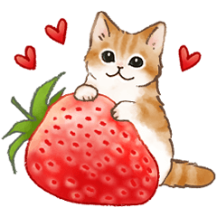 [LINEスタンプ] 使いやすい挨拶☆猫たちのスタンプ
