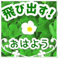 [LINEスタンプ] 飛び出す!大人やさしい野の花