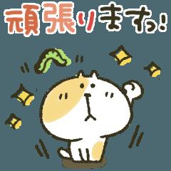 [LINEスタンプ] ネコさん★敬語