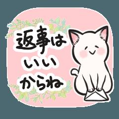 [LINEスタンプ] 気づかうネコ