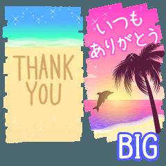 [LINEスタンプ] 大きい◆大人のビーチリゾートスタンプ3